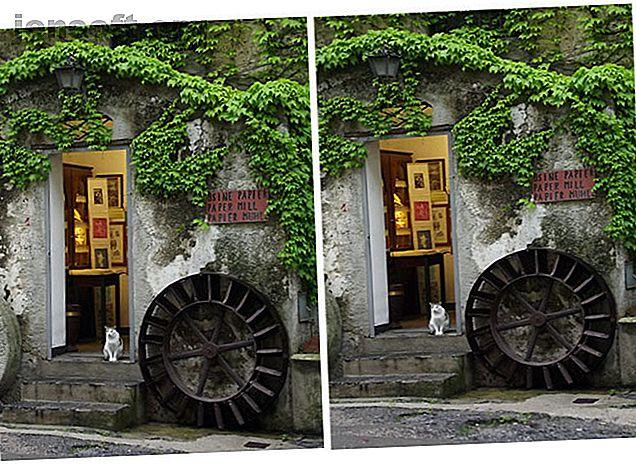 Ecco alcuni semplici modi per utilizzare lo strumento di trasformazione di Photoshop per modificare le tue foto.