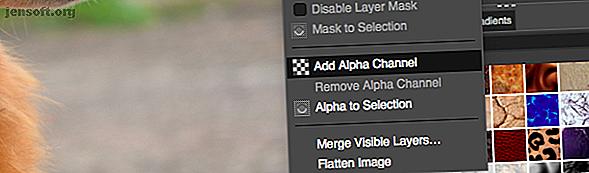 GIMP offre de nombreuses façons différentes de supprimer l'arrière-plan d'une image.  Mais quel est le bon à utiliser et comment fonctionnent-ils?