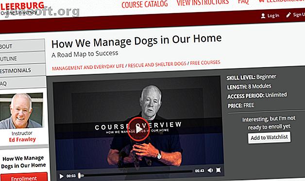 Vous n'avez pas besoin de faire appel à un professionnel pour entraîner votre chien.  Apprenez à votre chien de nouveaux tours avec ces cours de formation en ligne gratuits.