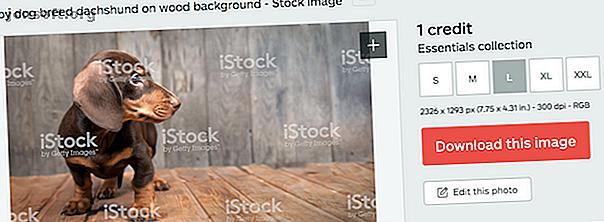 iStock offre un excellent rapport qualité-prix pour tous vos besoins en stock photo.  Découvrez ce que propose l'entreprise et pourquoi cela vaut la peine d'être examiné.